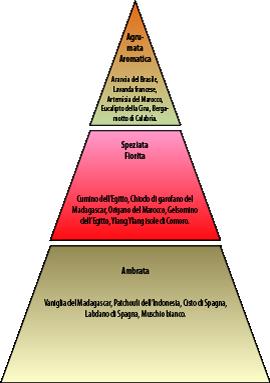 Piramide olfattiva Nuàvia Blu