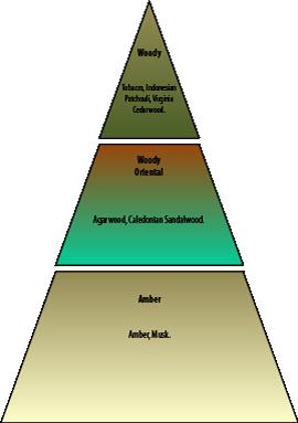 Olfactory pyramid Nuàvia Rossa